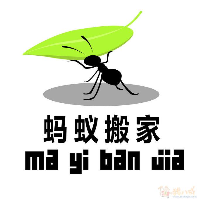 上海蚂蚁搬家-上海蚂蚁搬家公司-上海蚂蚁搬家电话